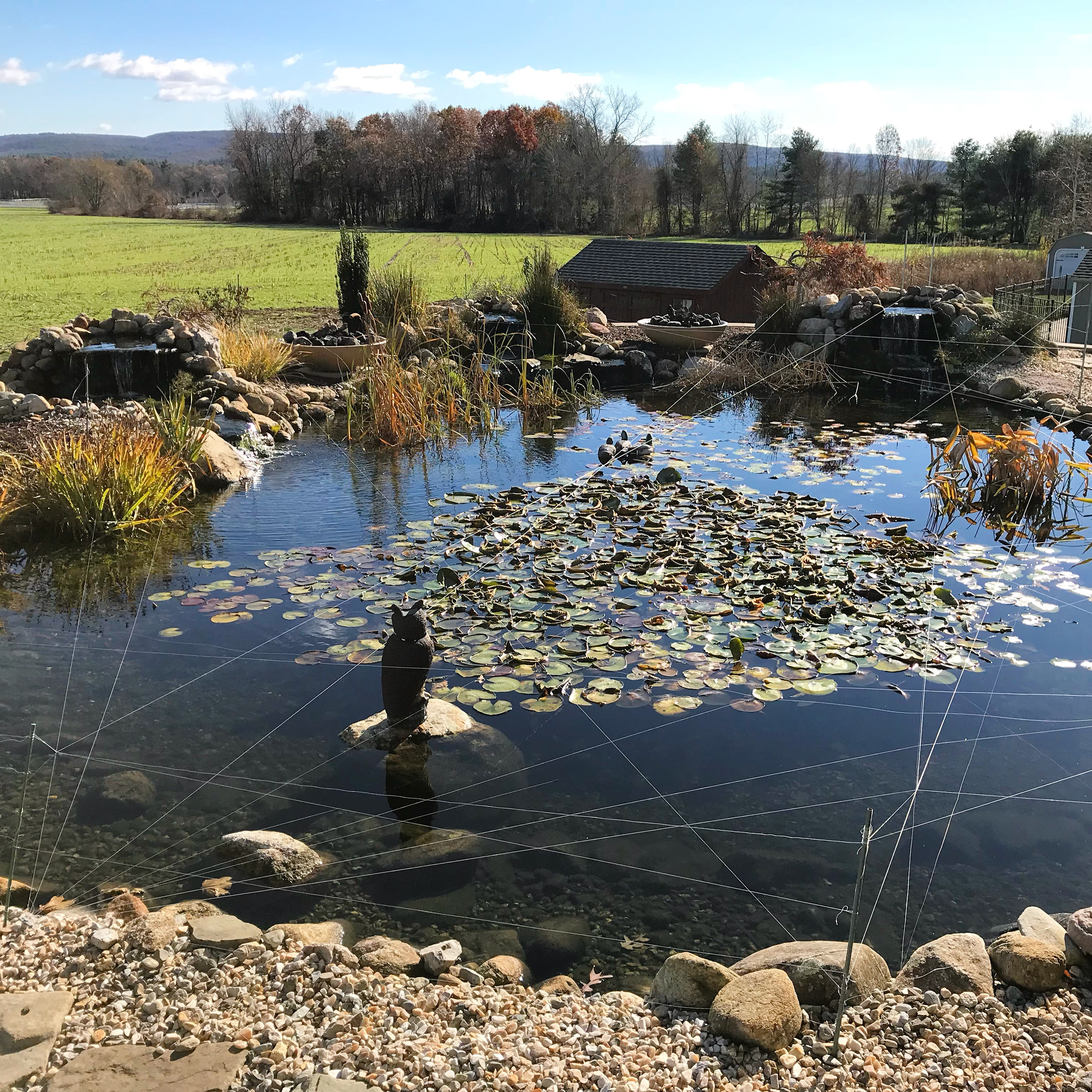 Pond in Somers, CT